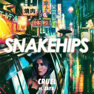 Snakehips-Cruel music hunter